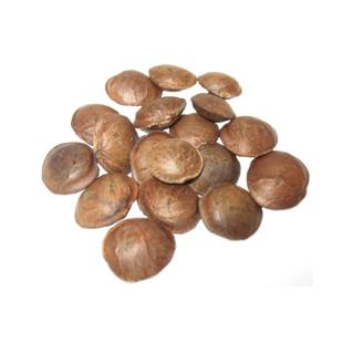 Sacha Inchi (sementes torradas)